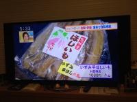 201711251.JPG